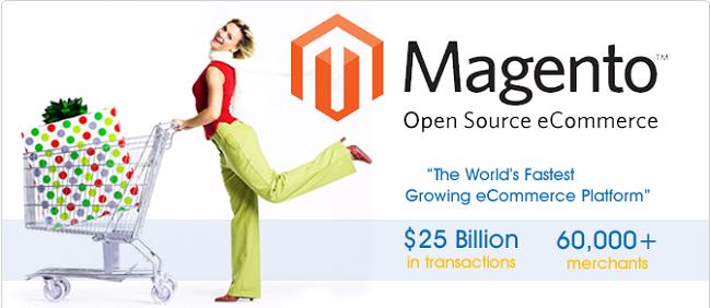 02 Magento- Ecommerce Platform