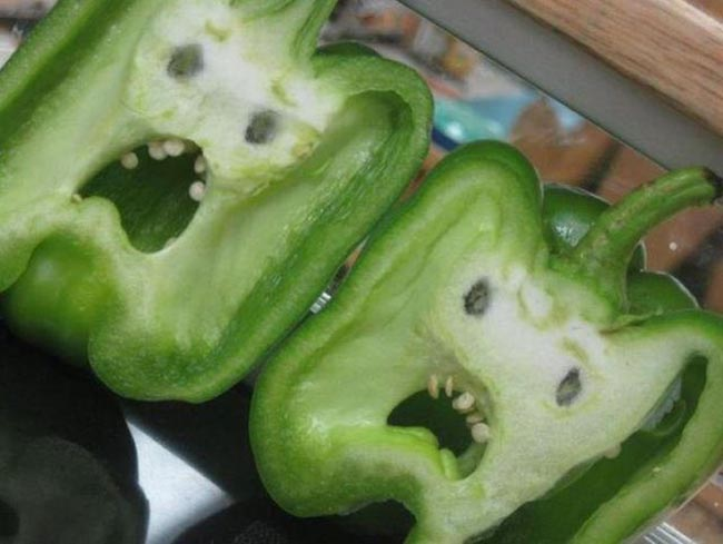 13. Bell Peppers Look Like Screaming Faces