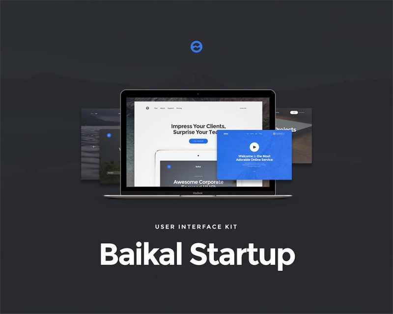 Baikal Web UI Kit