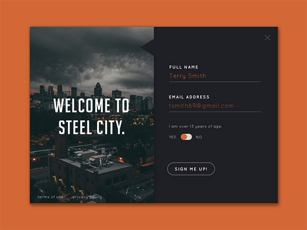 Steel City- sign up form