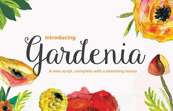 39. Gardenia Script