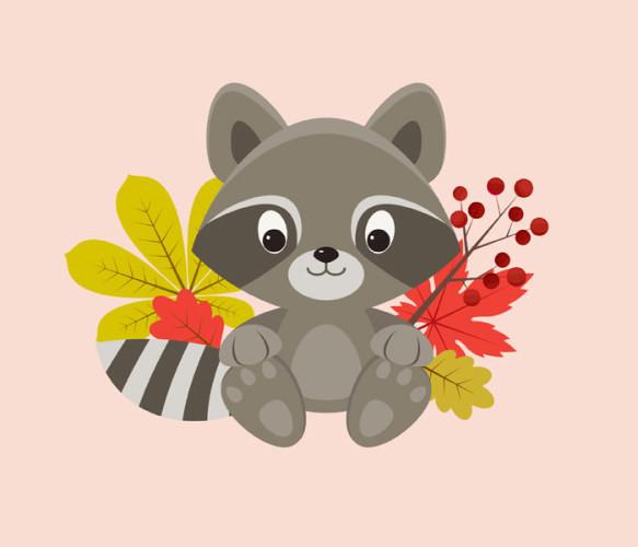 5-raccoon-character