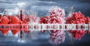 50 Amazing Examples of Infrared Photography