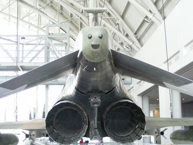 6. World's Happiest Airplane
