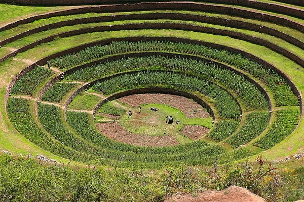 50 amazing and beautiful terrace farming for Terrace farming