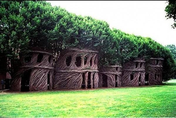 Stunning Art of Arborsculpture-11