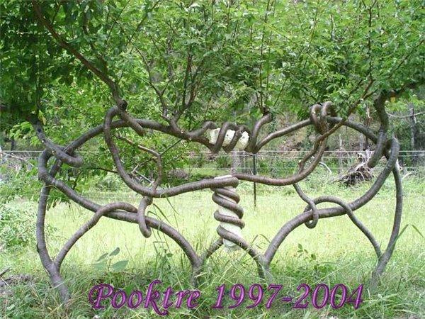 Stunning Art of Arborsculpture-19