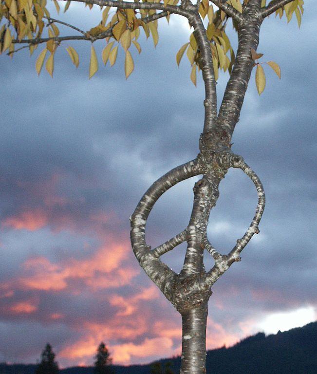 Stunning Art of Arborsculpture-22