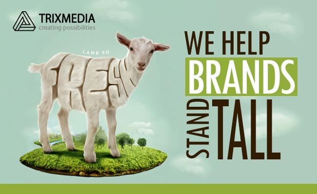 TRIXMEDIA-Top-Branding-Firm