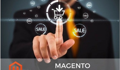 tools to develop Magento e-store smoothly
