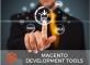 tools to develop Magento e-store smoothly
