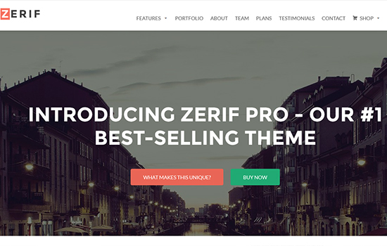 Zerif Pro